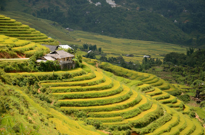 Glenn Cory Imagery - Taken in Sapa, Vietnam by Hannah