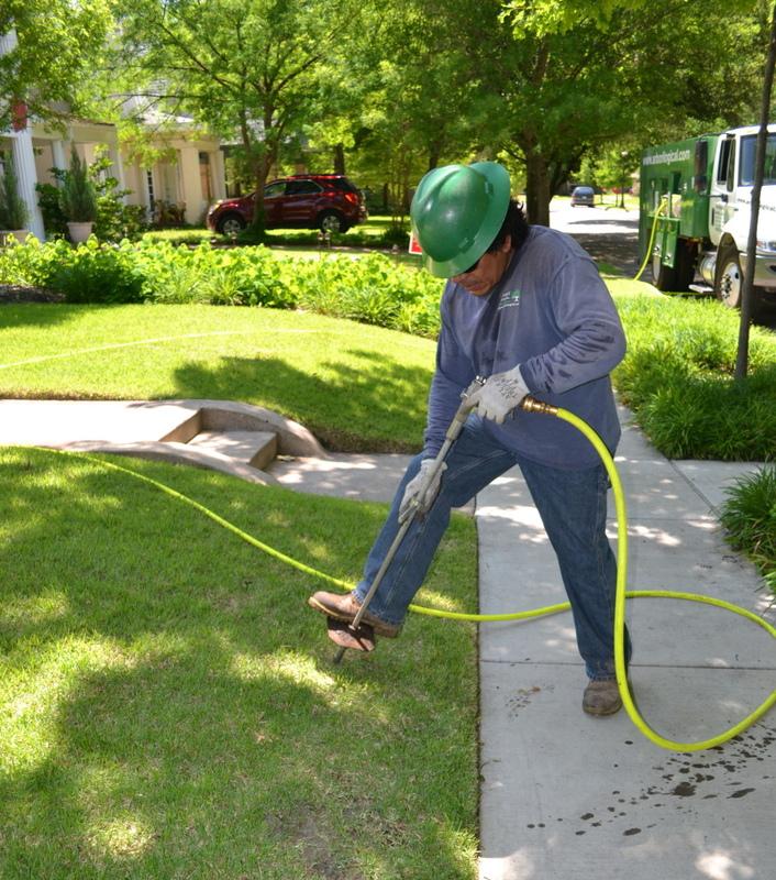 Tree Stump Grinding - Deep Root Fertilisation