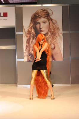 Michael Barnes - Salon international